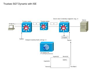 Trustsec SGT Dynamic with ISE