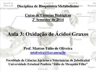 Disciplina de Bioquímica Metabolismo Curso de Ciências Biológicas 2º Semestre de 2014