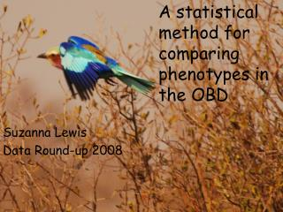 A statistical method for comparing phenotypes in the OBD