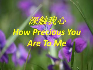 深触我心 How Precious You Are To Me