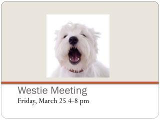 Westie Meeting