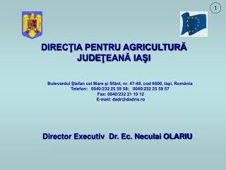 Director Executiv Dr. Ec. Neculai OLARIU