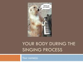 Your body during the singing process