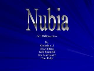 Mr. DiDomenico By: Christina Li  Shari Sacca  Nick Scarpelli  Lisa Maniscalco Tom Kelly