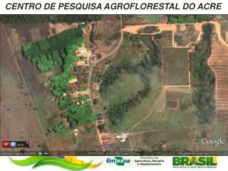CENTRO DE PESQUISA AGROFLORESTAL DO ACRE