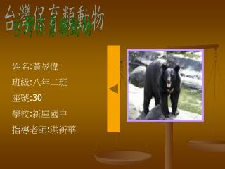台灣保育類動物
