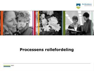 Processens rollefordeling