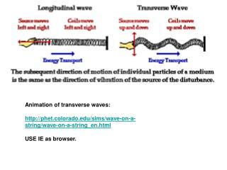 Animation of transverse waves: