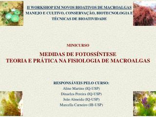 MINICURSO MEDIDAS DE FOTOSSÍNTESE TEORIA E PRÁTICA NA FISIOLOGIA DE MACROALGAS