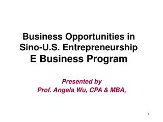 Business Opportunities in Sino-U.S. Entrepreneurship  E Business Program
