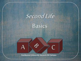 Second Life Basics
