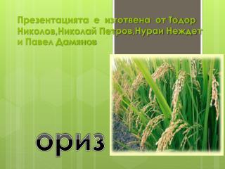 Презентацията е изготвена от Тодор Николов,Николай Петров,Нураи Неждет и Павел Дамянов