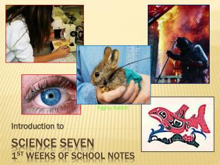 Science Seven 1 st weeks of school Notes