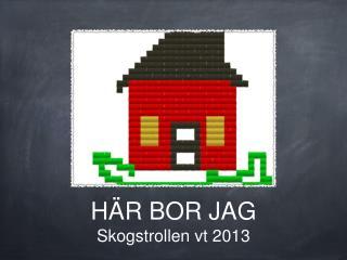 HÄR BOR JAG Skogstrollen vt 2013