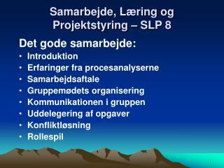 Samarbejde, Læring og Projektstyring – SLP 8