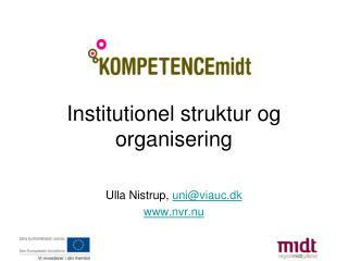 Institutionel struktur og organisering