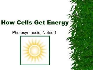How Cells Get Energy