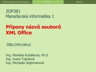 2OP381 Manažerská informatika 1 Přípony názvů souborů XML Office min.vse.cz