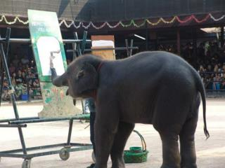 slon-zhivopisec
