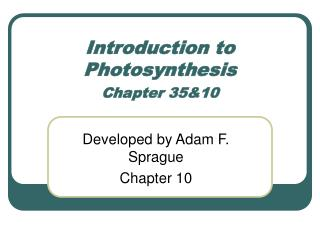 Introduction to Photosynthesis Chapter 35&10