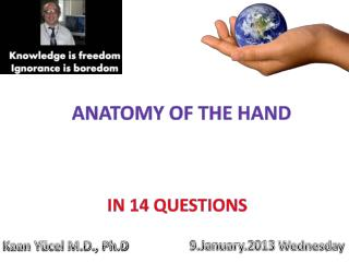 Kaan Yücel M.D., Ph.D