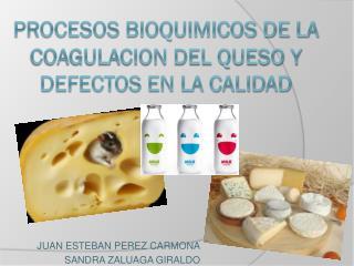 PROCESOS BIOQUIMICOS DE LA COAGULACION DEL QUESO Y DEFECTOS EN LA CALIDAD
