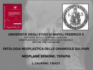 UNIVERSITA' DEGLI STUDI DI NAPOLI FEDERICO II CATTEDRA, SCUOLA DI SPECIALIZZAZIONE,