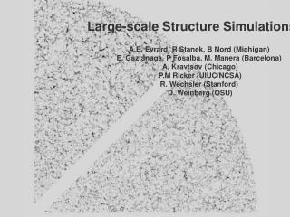 Large-scale Structure Simulations