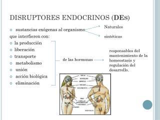 DISRUPTORES ENDOCRINOS ( DEs )