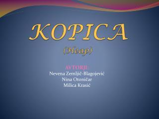 KOPICA ( Heap )