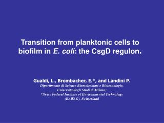 Transition from planktonic cells to biofilm in E. coli : the CsgD regulon .