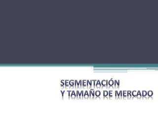 SEGMENTACIÓN Y TAMAÑO DE MERCADO