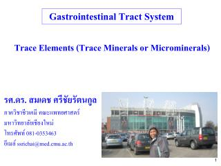 Gastrointestinal Tract System