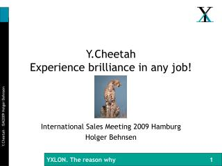 Y.Cheetah Experience brilliance in any job!
