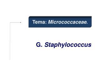 G.  Staphylococcus