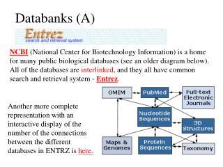 Databanks (A)