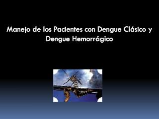 Manejo de los Pacientes con Dengue Clásico y Dengue Hemorrágico
