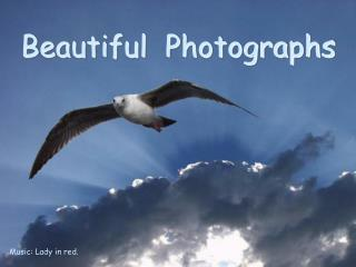 Beautiful  Photographs