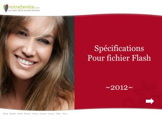 Spécifications Pour fichier Flash ~2012~