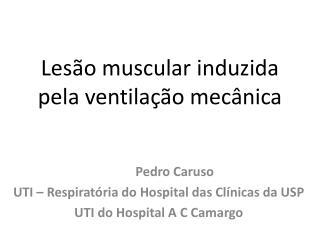Lesão muscular induzida pela ventilação mecânica