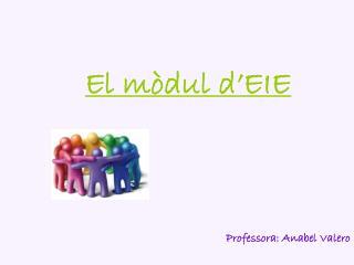 El mòdul d'EIE