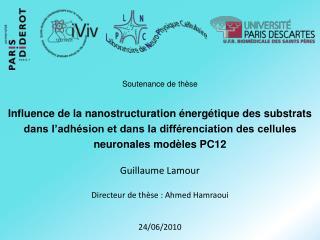Guillaume Lamour Directeur de thèse : Ahmed Hamraoui 24/06/2010