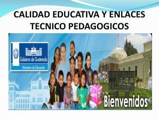 CALIDAD EDUCATIVA Y ENLACES TECNICO PEDAGOGICOS