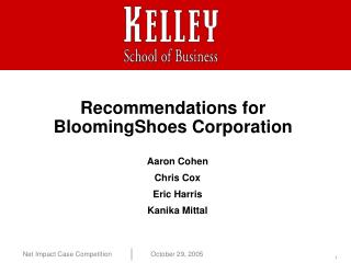Recommendations for  BloomingShoes Corporation