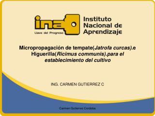 ING. CARMEN GUTIERREZ C