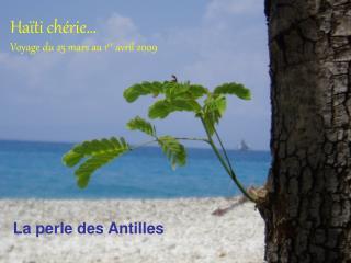 Haïti chérie… Voyage du 25 mars au 1 er avril 2009