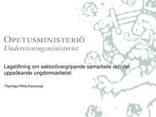 Lagstiftning om sektorövergripande samarbete och det uppsökande ungdomsarbetet