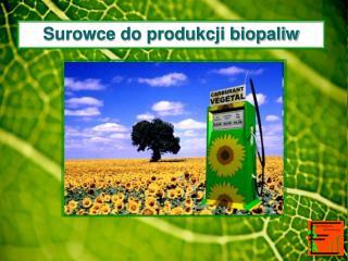 Surowce do produkcji biopaliw
