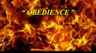 """  OBEDIENCE """