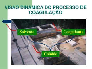 VISÃO DINÂMICA DO PROCESSO DE COAGULAÇÃO